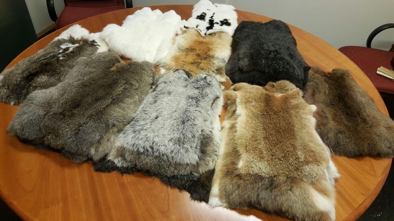 Partij konijnenbontjes