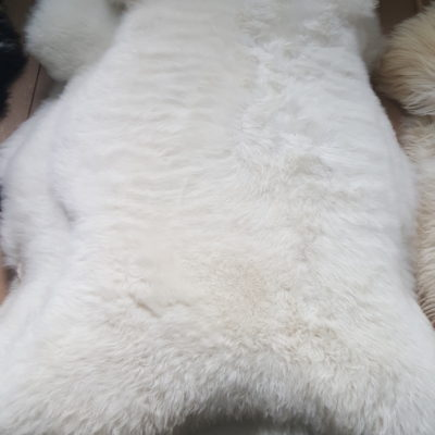 Partijhandel schapenvachten wit
