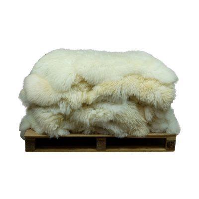 Groothandel schapenvachten