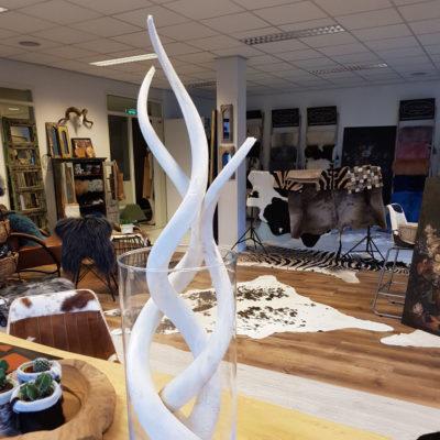 Witte krul koedoe hoorn